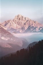 Preview iPhone wallpaper Nature landscape, mountains, valley, forest, fog
