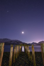 Preview iPhone wallpaper Night, bay, lake, mountains, stump, starry, moon