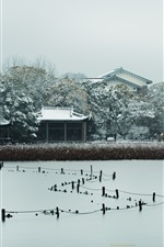 Preview iPhone wallpaper Pinghu Qiuyue, houses, trees, snow, winter, West Lake, Hangzhou, China