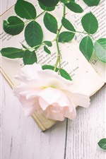 Preview iPhone wallpaper Pink rose, book, scissors