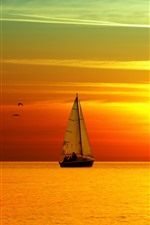 Sea, sailboat, birds, beautiful sunset landscape