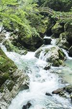 Preview iPhone wallpaper Shennongjia, Guanmenshan, creek, rocks, plank road, China