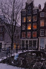Snowy, city, houses, trees, people, night