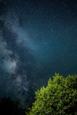 Preview iPhone wallpaper Starry, sky, night, tree, green leaves