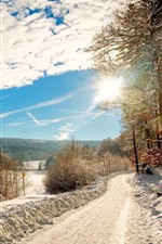 Preview iPhone wallpaper Thick snow, trees, road, fields, sun rays, winter