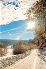 Neve grossa, árvores, estrada, campos, raias do sol, inverno