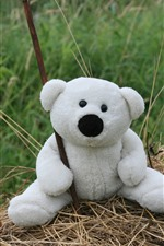 Preview iPhone wallpaper Toy bear, white teddy