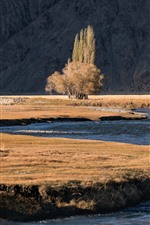 Preview iPhone wallpaper Tree, river, Pamirs