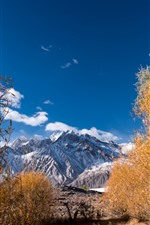 Preview iPhone wallpaper Trees, autumn, Pamirs, mountains, blue sky