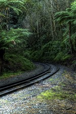 Preview iPhone wallpaper Trees, railway, tropical