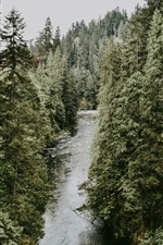 Preview iPhone wallpaper Trees, river, nature landscape