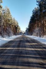 Trees, road, snow, winter, shadow