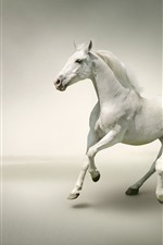 Preview iPhone wallpaper Two white horses running