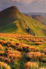 Preview iPhone wallpaper Ukraine, mountains, grass, nature landscape