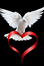 White dove, love heart ribbon, black background