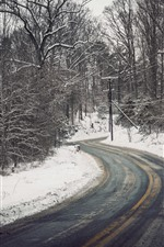 Preview iPhone wallpaper Winter, road, trees, snow, power lines
