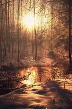 Preview iPhone wallpaper Winter, trees, snow, river, sun rays, morning