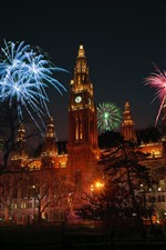 Austria, Vienna, fireworks, night, city