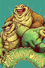 Battletoads, video game