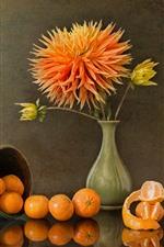 Chrysanthemum, tangerines, vase, cup, still life