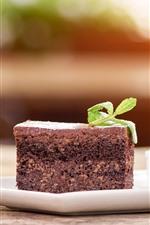 Dessert, one slice chocolate cake, mint