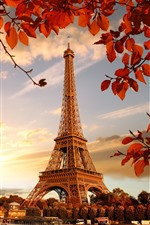Eiffel Tower, red leaves, twigs, autumn