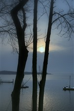 Lake, pier, trees, sunrise, fog, morning