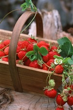 Preview iPhone wallpaper Many strawberries, basket, stump