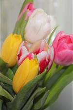 Preview iPhone wallpaper Pink, white, yellow tulips, bouquet