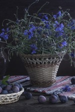 Plums and blue cornflowers, darkness