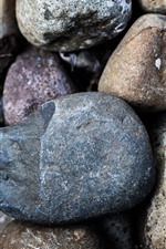 Some cobblestones