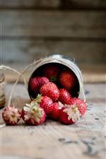Strawberry, rope