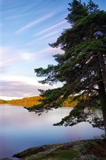 Preview iPhone wallpaper Sweden, lake, trees, nature landscape