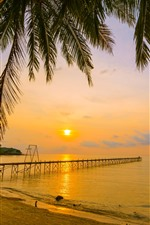 Tropical, summer, beach, sea, palm trees, pier, sunset