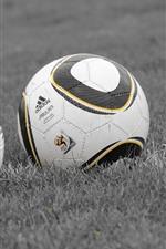 Duas bolas de futebol