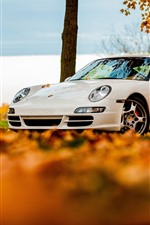 White Porsche 911 car, autumn leaves