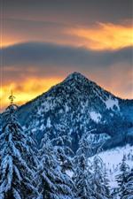 Winter, mountains, trees, snow, dusk