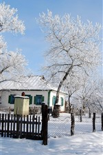 Winter, snow, trees, road, houses, village