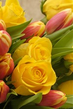 Yellow roses and red tulips