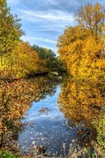 Preview iPhone wallpaper Beautiful autumn, golden trees, pond