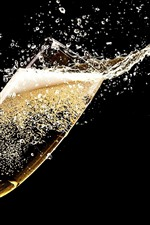 Champagne, glass cup, splash, black background
