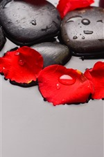 Cobblestone, red rose petals, water