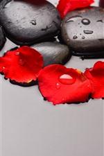 Булыжник, красные лепестки роз, вода