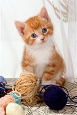 Cute kitten and wool balls