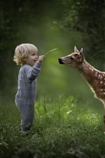 Cute little boy and deer