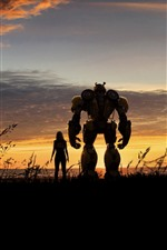 Girl and Bumblebee, Transformers