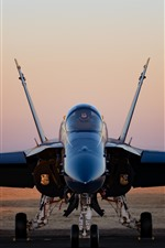 Preview iPhone wallpaper Hornet CF-18 fighter front view