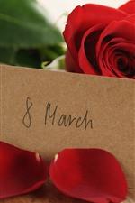 Aperçu iPhone fond d'écran8 mars, roses rouges