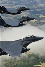 McDonnell Douglas F-15E fighters flight, height