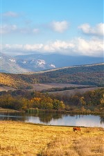 Preview iPhone wallpaper Mountains, river, trees, grass, clouds, cow, autumn